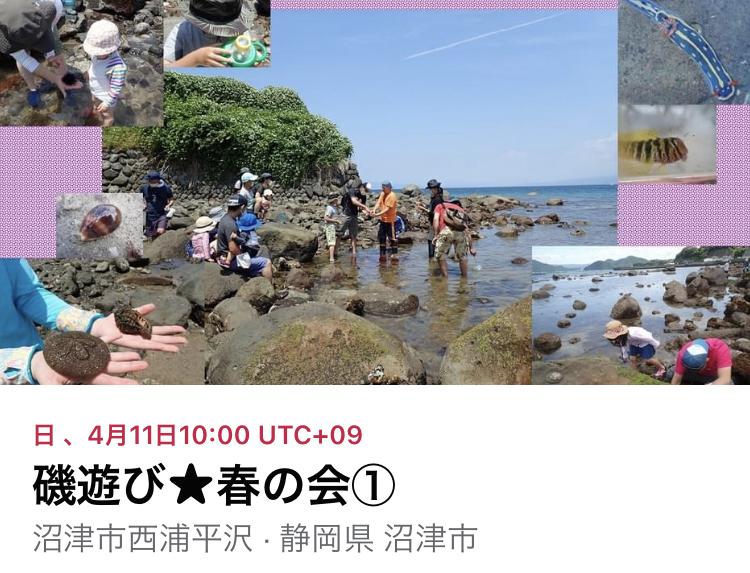 磯遊び会開催!!
