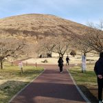 社長と桜の里に行きました。