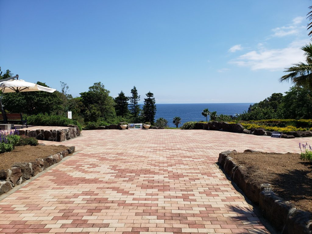 城ケ崎海岸とニューヨークランプミュージアムに行きました。